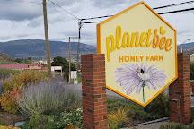 Planet Bee Honey Farm & Meadery, Vernon, Canada