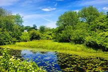 Trustom Pond National Wildlife Refuge, Rhode Island, United States