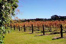 Orange Mountain Wines, Borenore, Australia