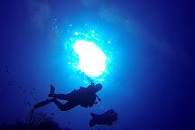 Grand Bleu Diving, Sandy Bay, Honduras