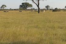 Hwange National Park, Hwange National Park, Zimbabwe