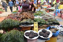 Gijang Market, Busan, South Korea