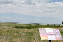 Quivira National Wildlife Refuge, Stafford, United States