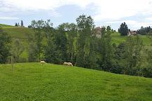 Zeughaus Teufen, Teufen, Switzerland