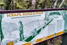 Woods Creek Track, Greymouth, New Zealand