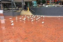 Harbourside Shopping Centre, Sydney, Australia