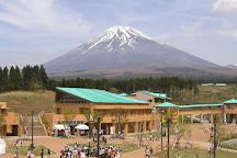 Mount Fuji Children's World, Fuji, Japan