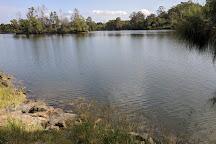 Rocks Ferry Reserve, Wauchope, Australia
