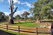 Yallingup Shearing Shed, Yallingup, Australia