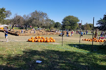 Love Creek Orchards, Medina, United States
