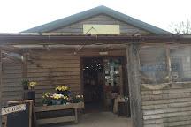 Thornhill Farm Shop, Cardiff, United Kingdom