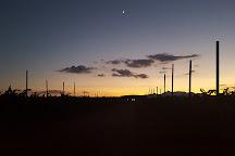 Rancho Rossa Vineyards, Elgin, United States