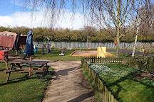 Willow Tree Family Farm, Shirebrook, United Kingdom