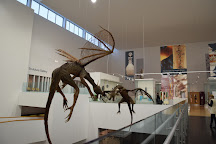 Ulster Museum, Belfast, United Kingdom