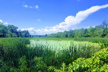 Vischer Ferry Nature & Historic Preserve, Clifton Park, United States