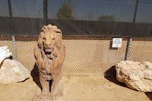 Lion Habitat Ranch, Henderson, United States