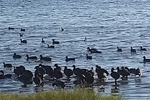 Lagoa do Peixe National Park, Mostardas, Brazil