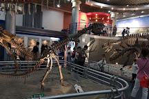 Museum of Natural History, Beijing, China