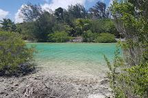 Bora Bora Lagoonarium, Vaitape, French Polynesia