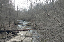 Raven Run Nature Sanctuary, Lexington, United States