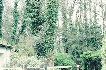 Chambercombe Manor, Ilfracombe, United Kingdom