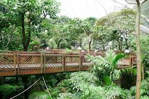 Edward Youde Aviary, Hong Kong, China