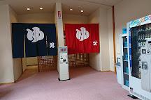 Ouda Onsen Akinonoyu, Uda, Japan
