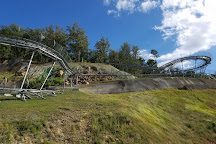 The Coaster at Goats on the Roof, Pigeon Forge, United States