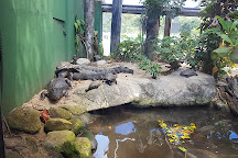 Ubatuba Aquarium, Ubatuba, Brazil