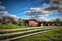 Maybury Farm, Northville, United States