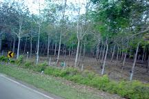 Desaru, Pengerang, Malaysia