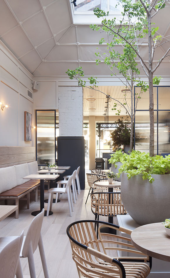 The Ugly Duckling Wine Bar