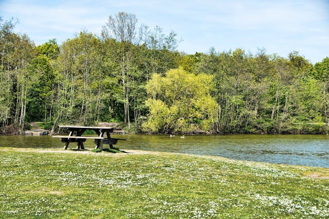 Visit Belhus Wood Country park on your trip to Aveley