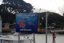 Hawaii Adventure Diving, Haleiwa, United States