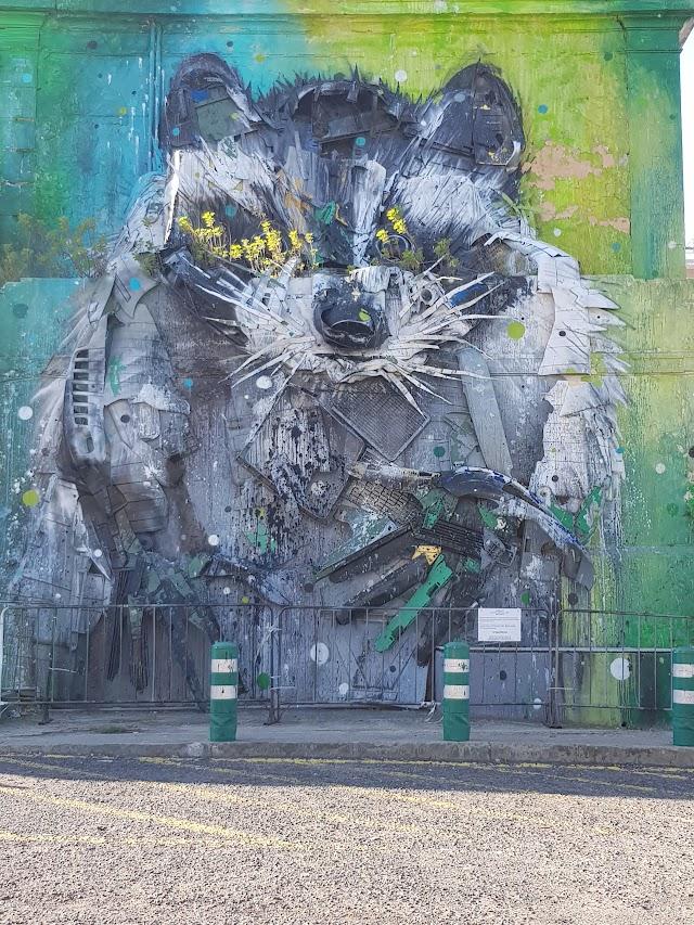 Big Raccoon street art installation