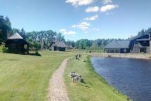 Zemaitija Park Forest, Plateliai, Lithuania