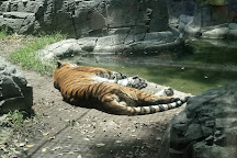 Parque Zoologico de Chapultepec, Mexico City, Mexico