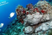 Fuerteventura Buceo Diving center, Morro del Jable, Spain