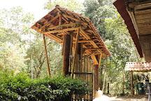 Jardin Botanico San Jorge, Ibague, Colombia