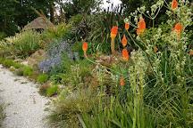 Enys Gardens, Penryn, United Kingdom