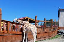 Animal Adventure Park, Harpursville, United States