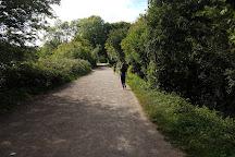 Cosmeston Lakes Country Park, Penarth, United Kingdom