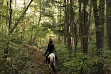 Appalachian Trail Rides, Mineral Bluff, United States
