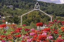 Weed Orchards & Winery, Marlboro, United States