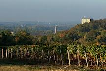 Domaine du Vieil Orme, Saint-Julien-de-Chedon, France