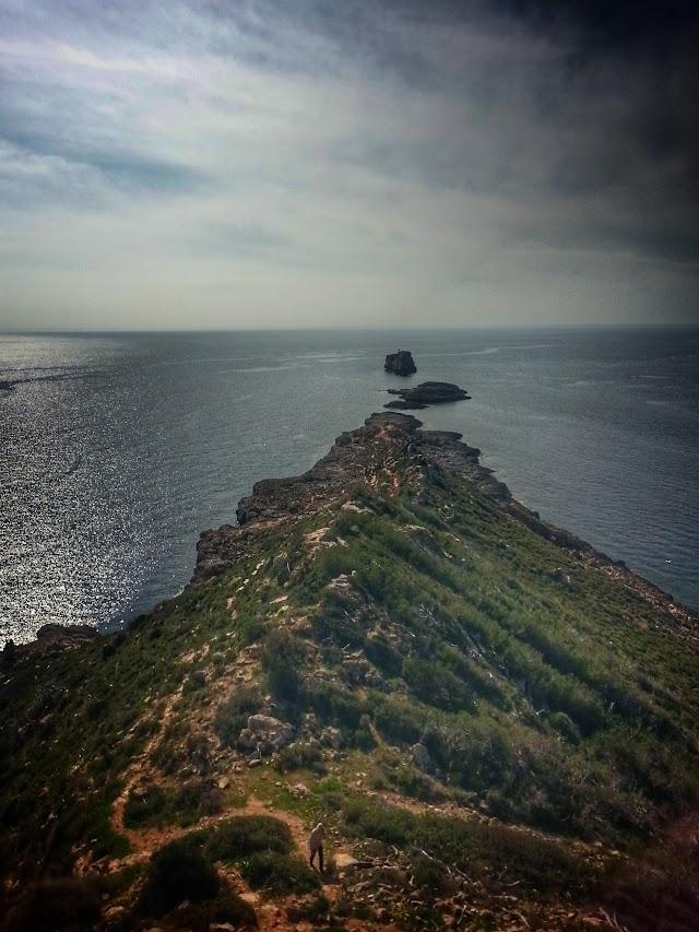 Punta de El Toro