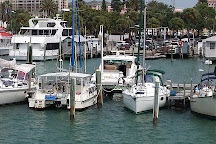 Queen Fleet Deep Sea Fishing, Clearwater, United States