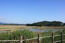 Upo Wetland, Changnyeong-gun, South Korea