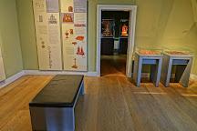 Deutsches Bernsteinmuseum, Ribnitz-Damgarten, Germany