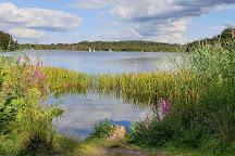 Frensham Great Pond & Common, Frensham, United Kingdom